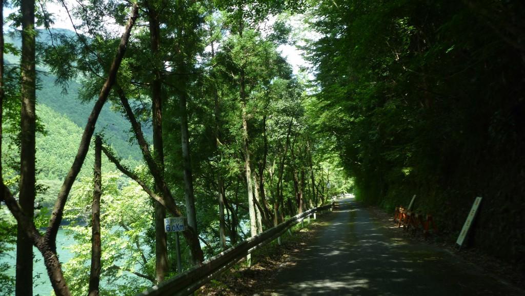 静かな道 県道285号線