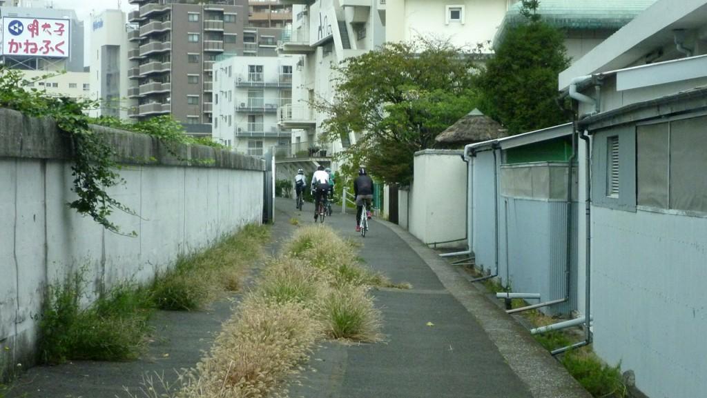 隅田川左岸