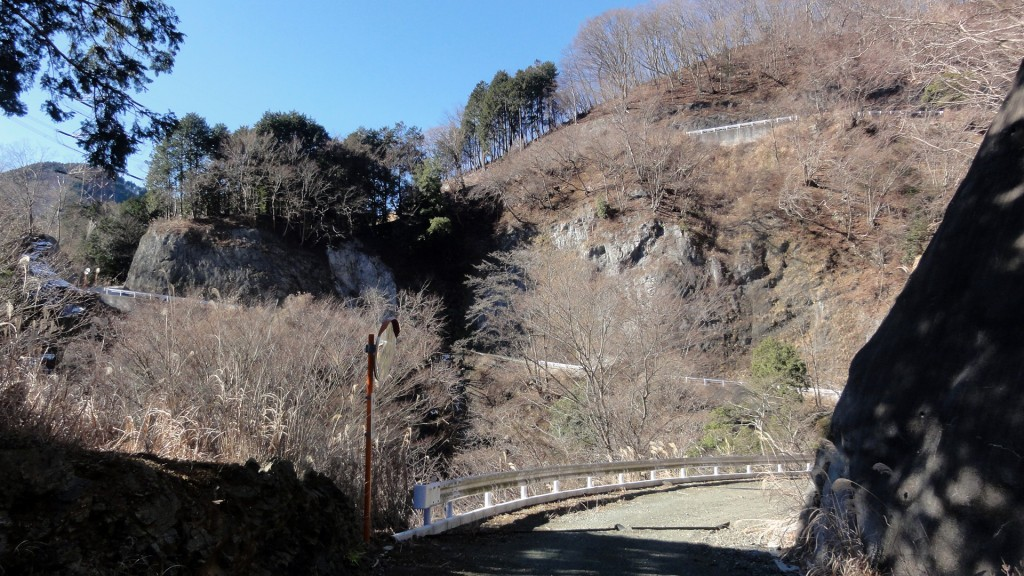mushisawa_14