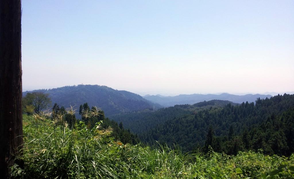 日影沢林道のピークからの眺望