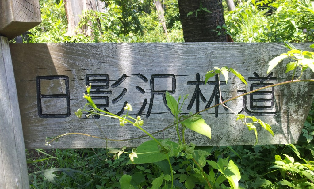 hikagesawa_18