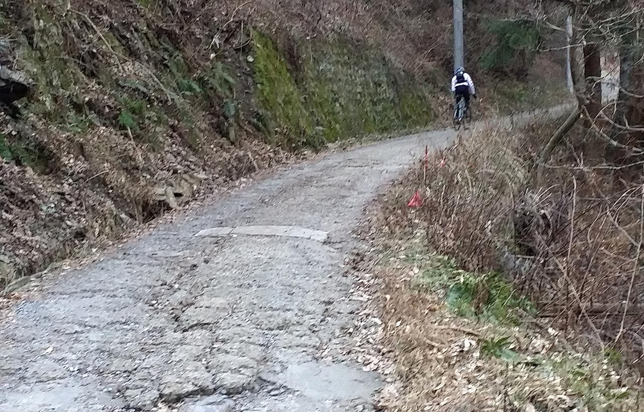 日影沢林道
