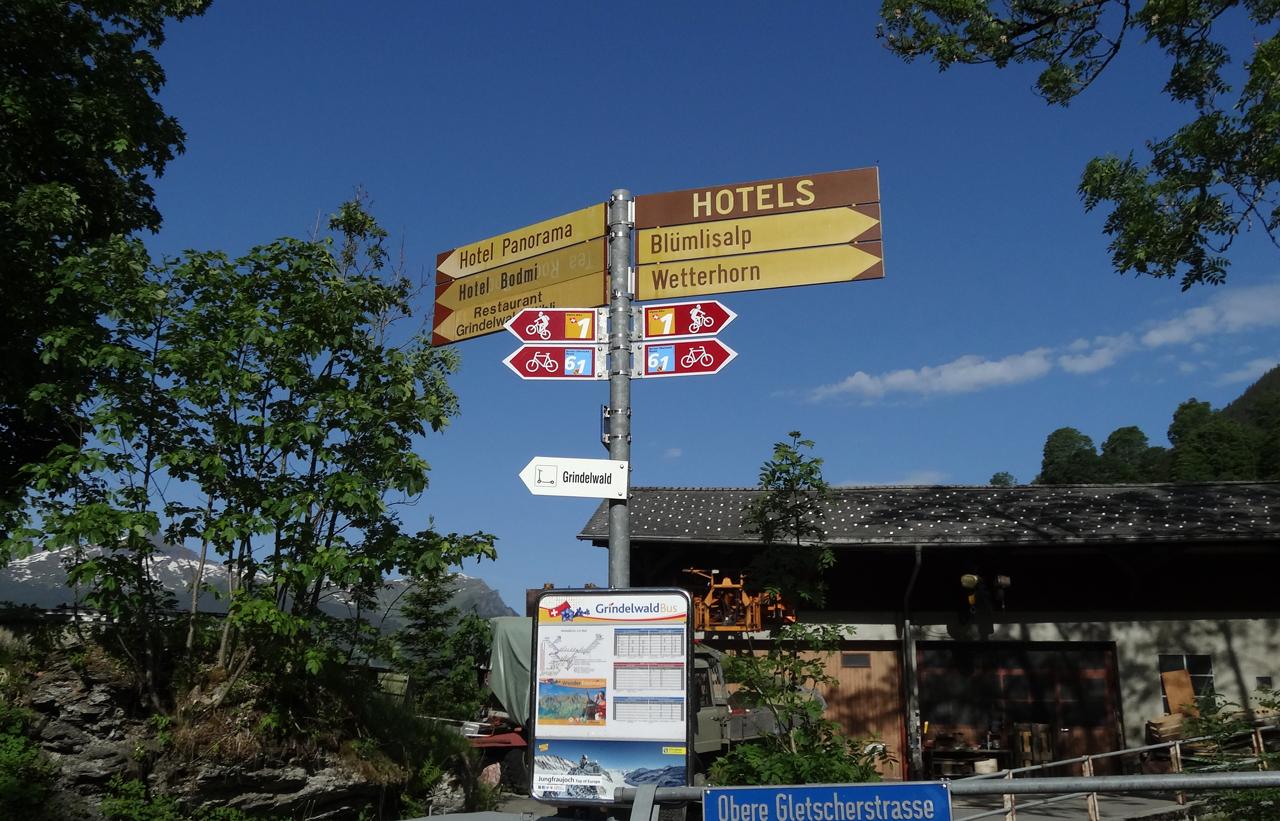 ロードサイクリング・リージョナルルート61号とマウンテンバイキング・アルペン1号