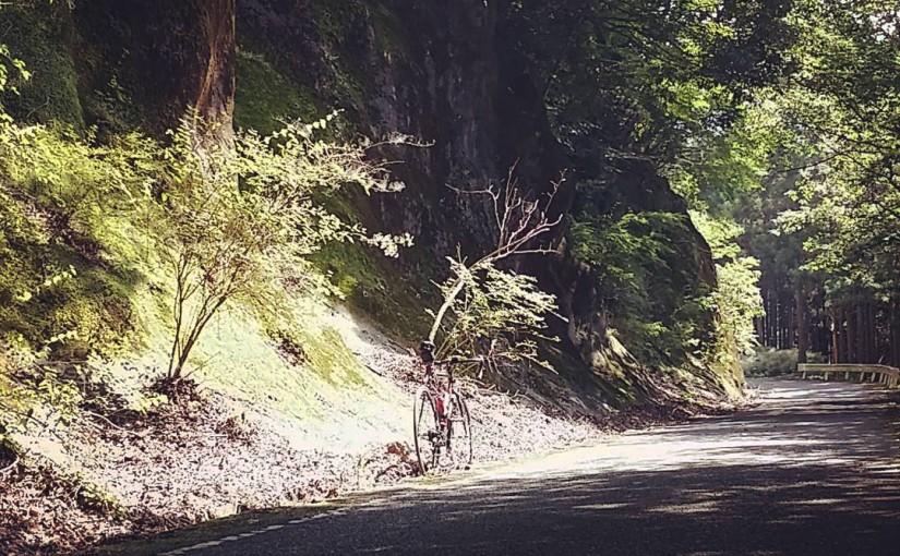 暑い夏に自転車乗るなら山の中の道がオススメ