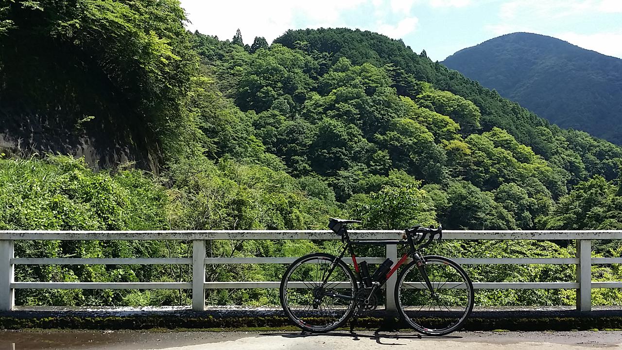 秦野峠の林道
