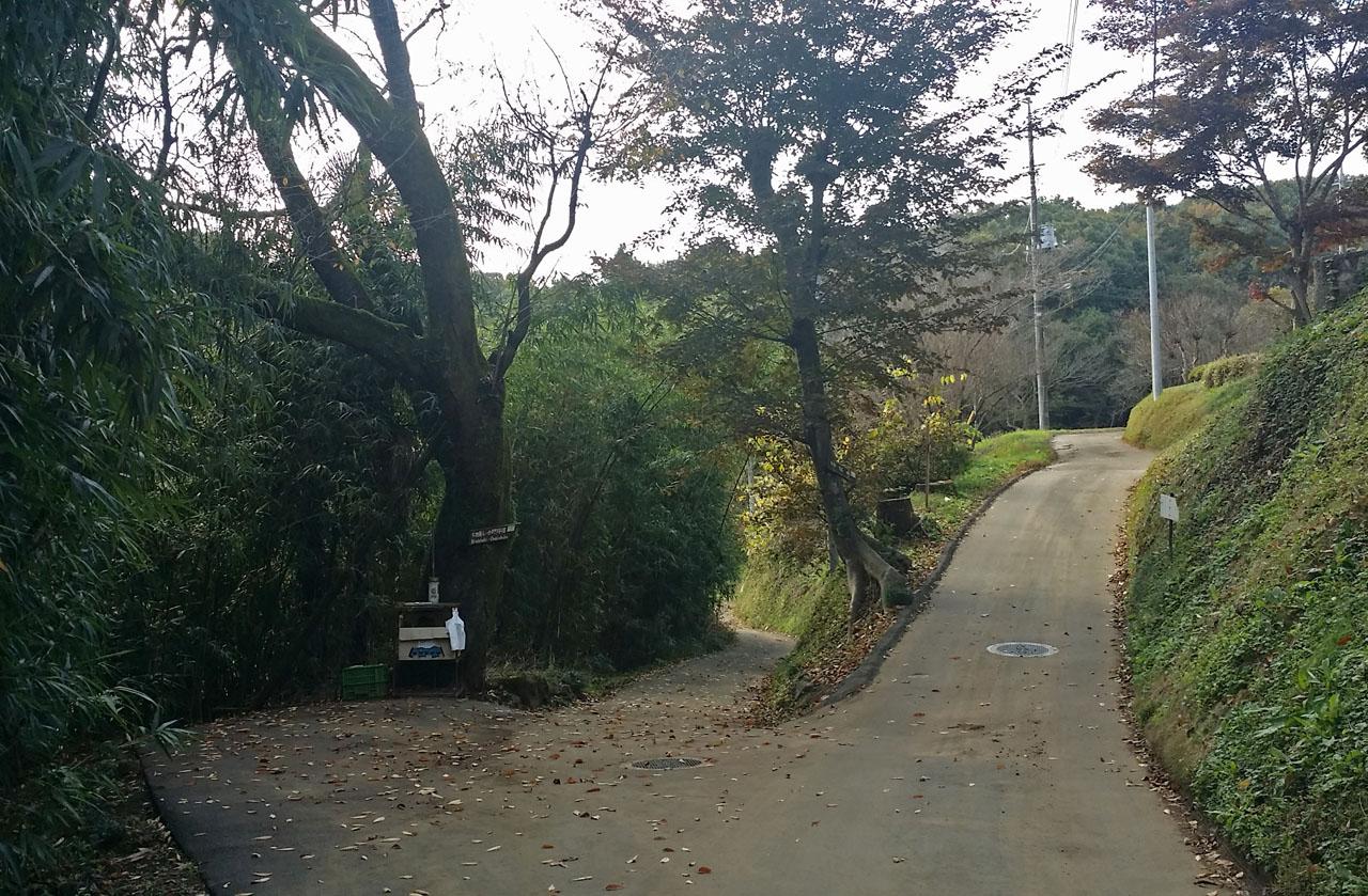 布田道の分かれ道