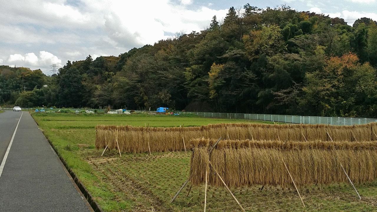 小田急多摩線黒川駅近く