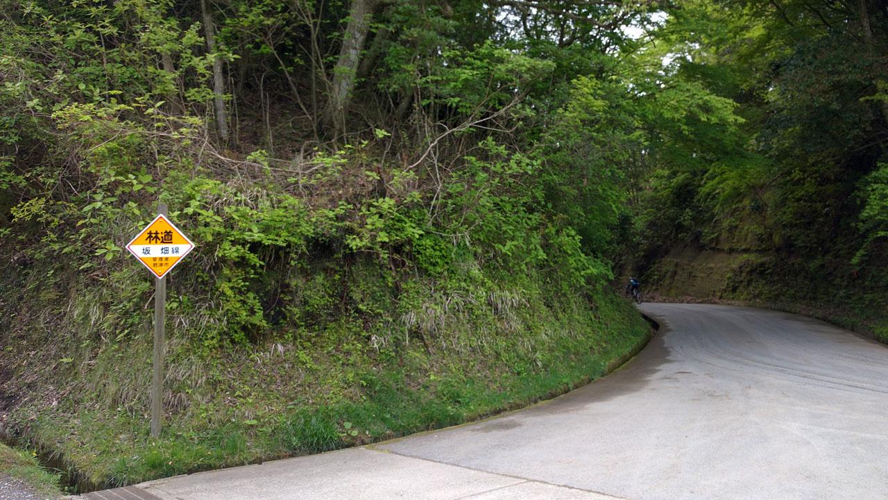 林道 坂 畑線