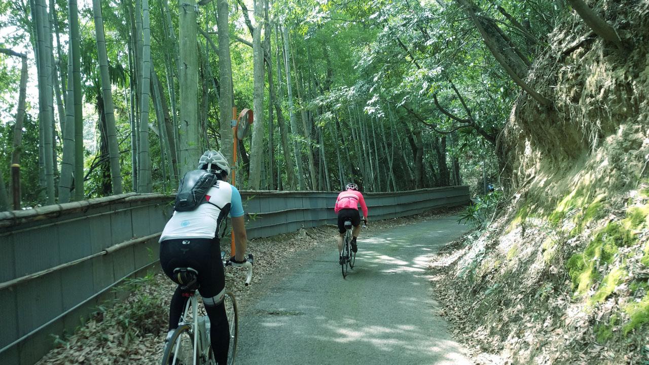 吉高の大桜への上り道