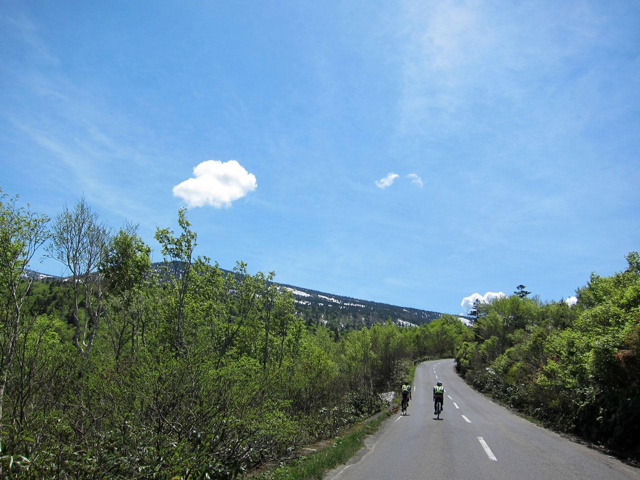 傘松峠への上り Photo by でっちー