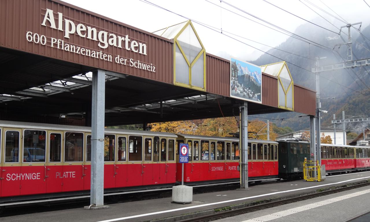 シーニゲ・ブラッテ鉄道のヴィルダースヴィル駅