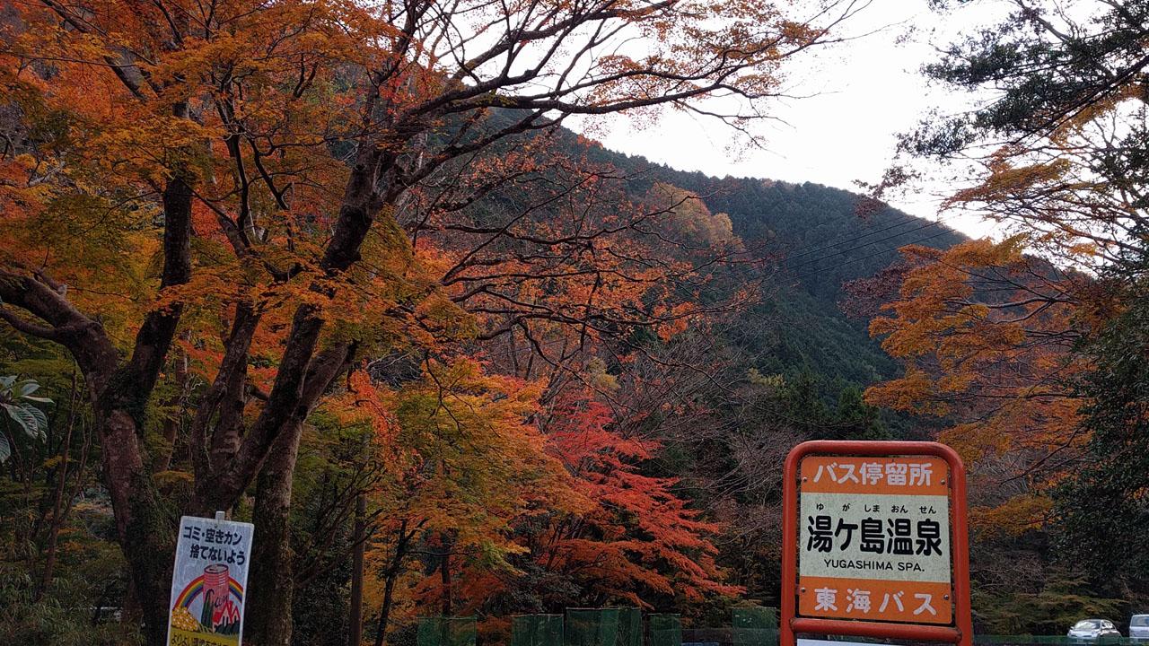 湯ヶ島温泉の紅葉