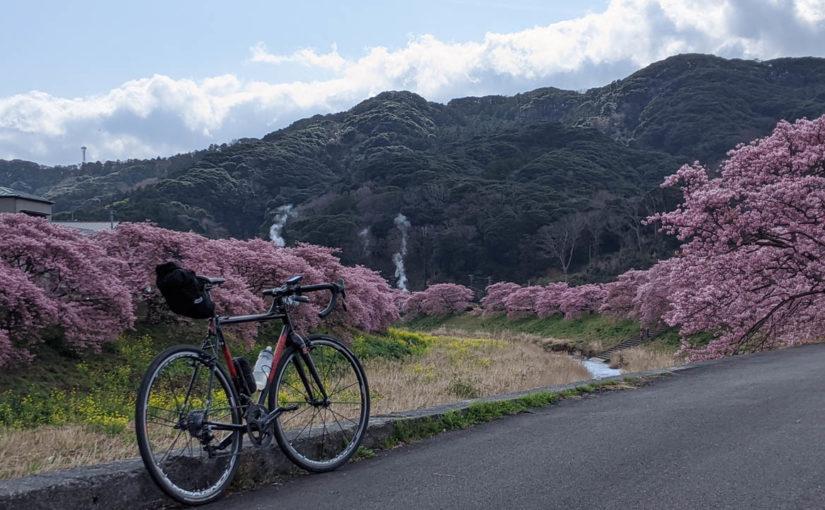 天城峠を越えて河津桜を見に行くライド2020